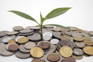 La importancia del Administrador de Empresas en la construcción de un Futuro Sostenible
